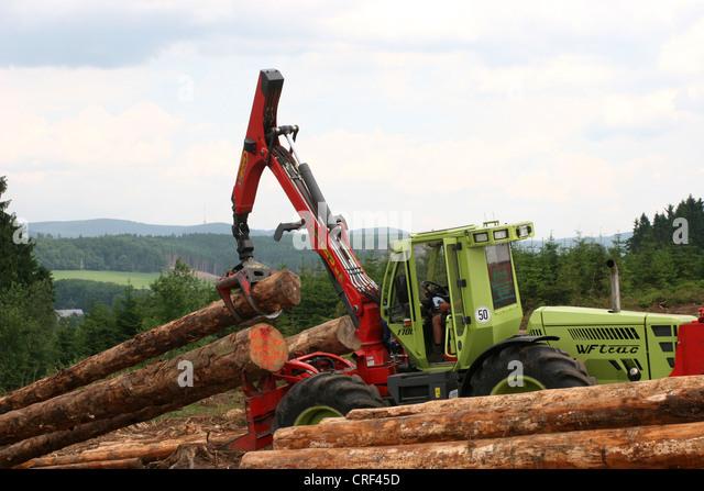 Norway spruce (Picea abies), harvester handling spruce logs, Germany, North Rhine-Westphalia, Sauerland - Stock Image