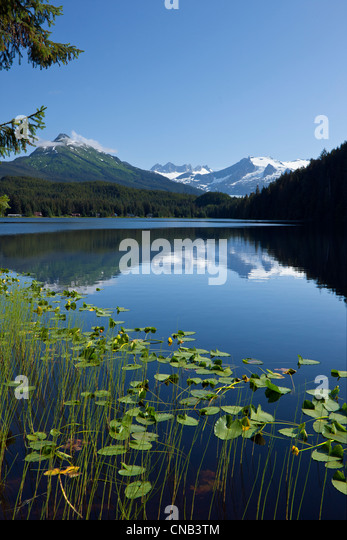 Scenic view of Auke Lake and Mendenhall Glacier and Coast Range Mountains, Southeast Alaska, Summer - Stock Image