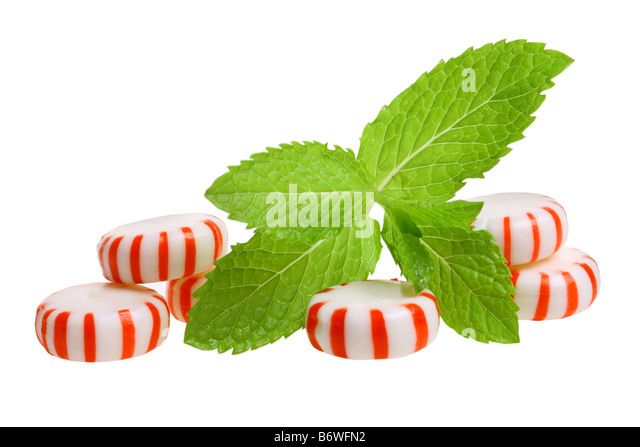 Peppermint candies and sprig of mint cut out isolated on white background - Stock Image
