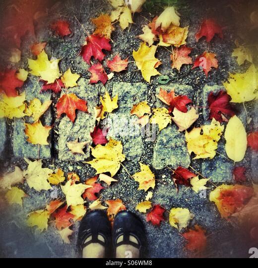 Autumn - Stock-Bilder