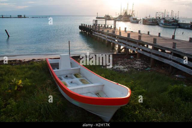 Ponga stock photos ponga stock images alamy for Fishing docks near me