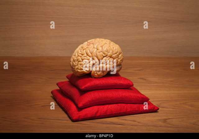 concept brain on red pillows - Stock Image