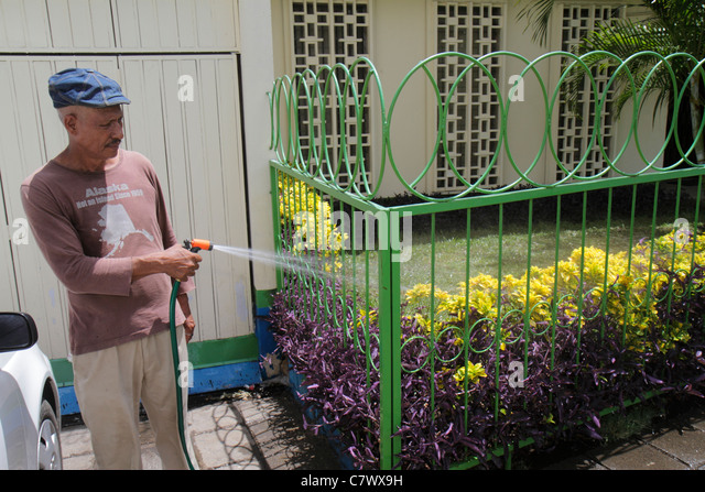 Managua Nicaragua Hispanic man garden caretaker watering hose flowers fence - Stock Image