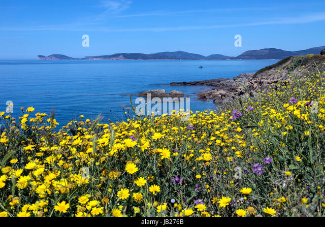 The west coast of the Italian island of Sardinia looking towards Capo Caccia in the distance. - Stock Image