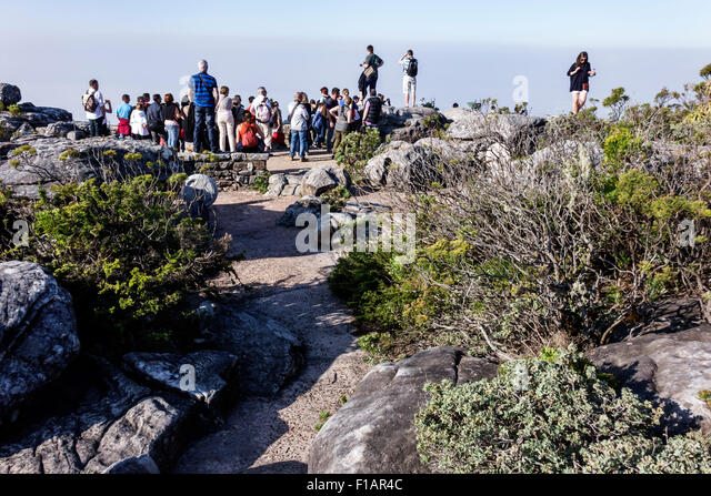 South Africa African Cape Town Table Mountain National Park nature reserve top overlook - Stock Image