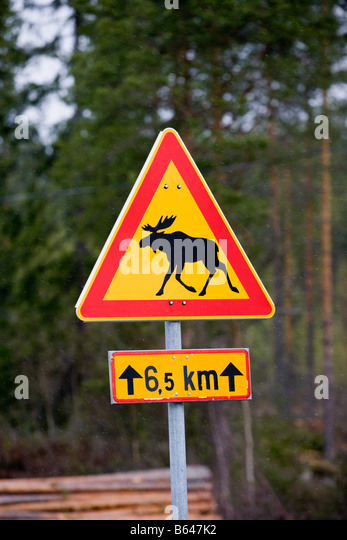 Finland, Kuhmo, road sign which warns for crossing moose. - Stock Image