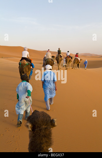 Tourists on a camel ride Merzouga Dunes Sahara Morocco - Stock Image