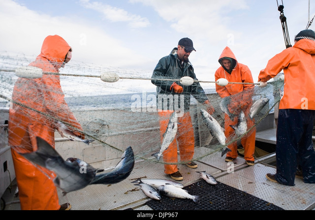 Gilnetting stock photos gilnetting stock images alamy for Alaska department of fish and game