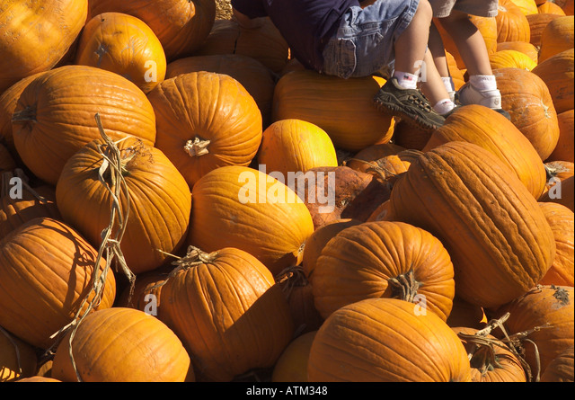 pumpkin hollow antiques nh