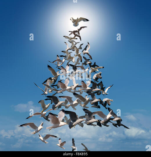 Holiday tree of hope spiritual concept as a group of birds flying in coordinated style shaped as a Christmas tree - Stock-Bilder