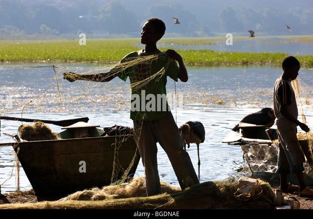 Amora Gedel fish market with Marabou storks, Awassa, Ethiopia - Stock Image