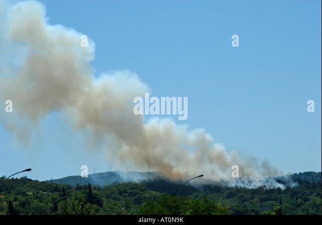 FOREST FIRE - Stock-Bilder