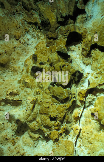 limestone cave rock underwater Florida fresh water spring diving - Stock Image