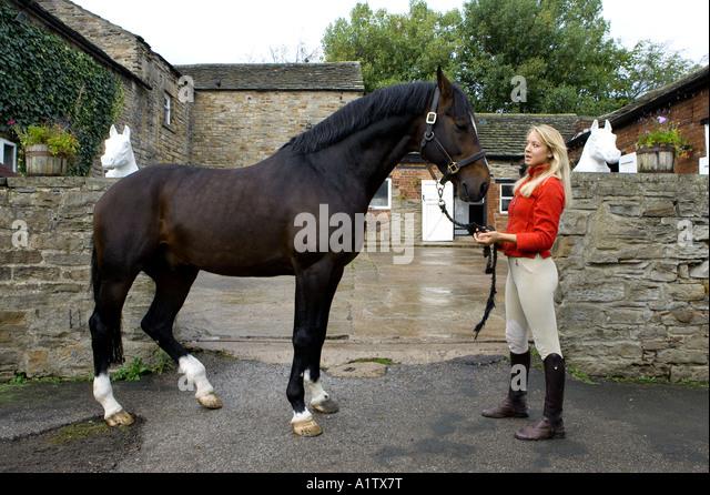 Ellen Whitaker showjumper and equestrian rider - Stock Image