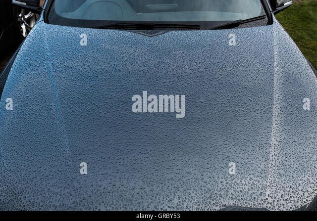 beading on car bonnet rain grey weather protection - Stock Image
