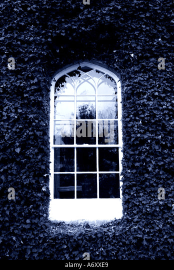 Victorian window with ivy around - Stock Image
