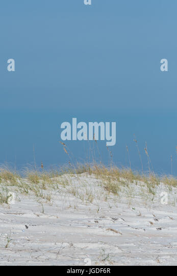 Sand Dune Hill with Sea Grass in coastal park - Stock Image
