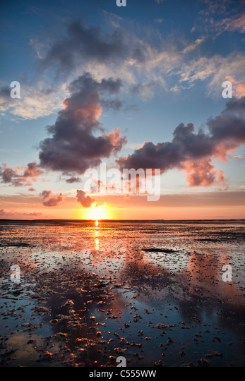The Netherlands, Buren, Ameland Island, belonging to Wadden Sea Islands. Unesco World Heritage Site. Mud flats. - Stock-Bilder