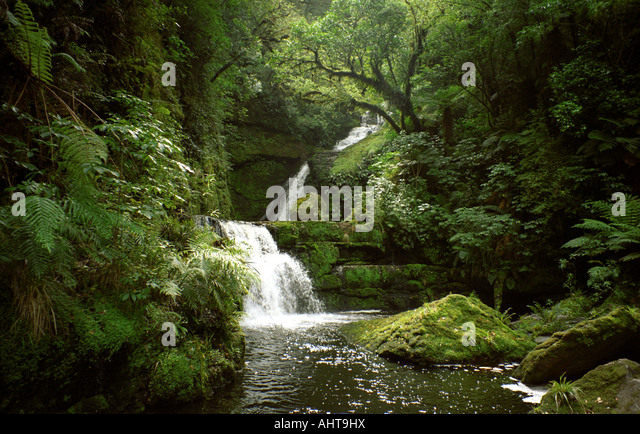 mclean falls, southern scenic route,n.z. - Stock Image