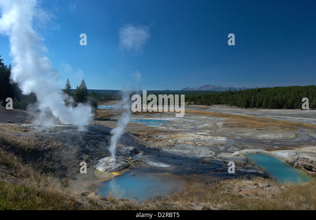 Fumaroles (steam vents) in Porcelain Basin, Norris Geyser Basin, Yellowstone National Park, Wyoming, USA - Stock Image