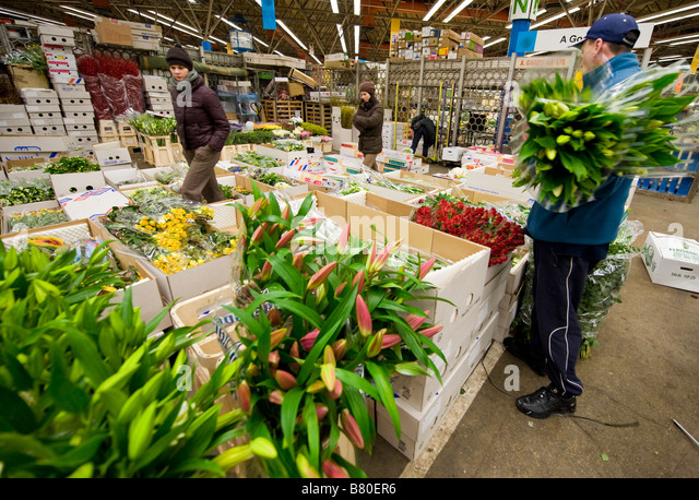 A man looks through a selection of flowers at London's New Covent Garden Flower Market London UK. - Stock Image