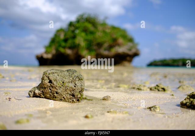 Close-Up Of Rocks On Beach - Stock Image