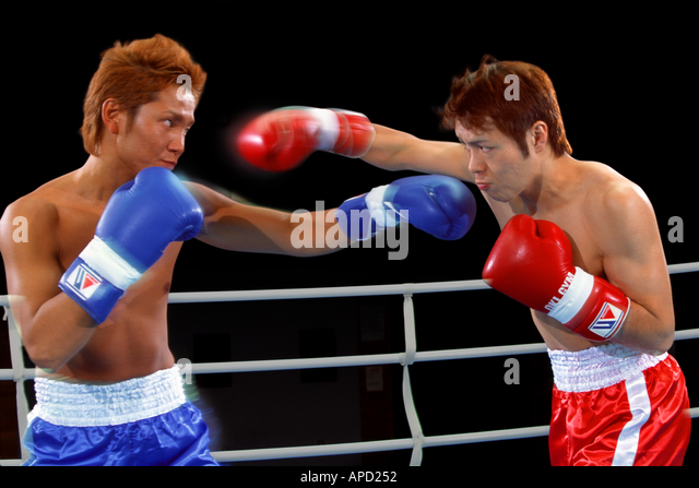 Sport Boxing - Stock Image