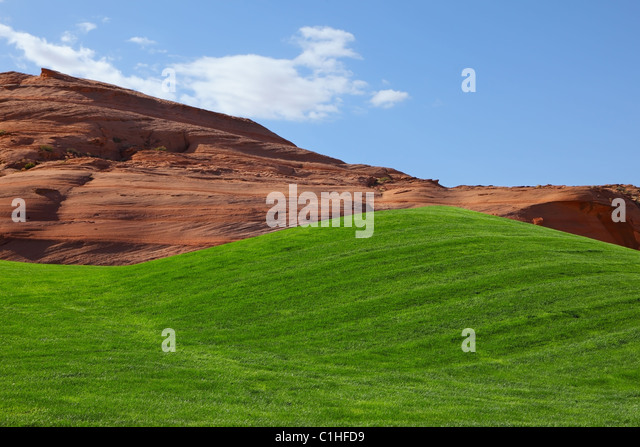 Bright green field for a golf - Stock Image
