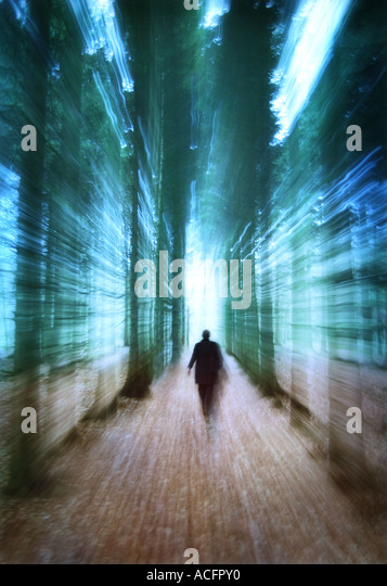photo of a man walking through trees - Stock-Bilder