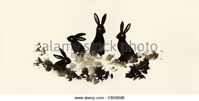 Rabbits sitting in grass together - Stock-Bilder