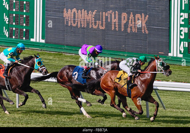 Three Horses with Jockeys Racing at Monmouth Park Race Track, Oceanport, New Jersey - Stock Image