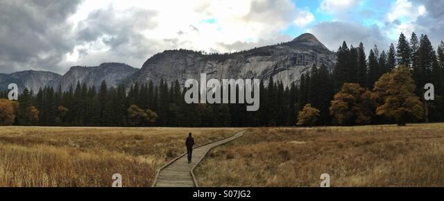 Solitary man walking through meadow, Yosemite National Park, California - Stock Image