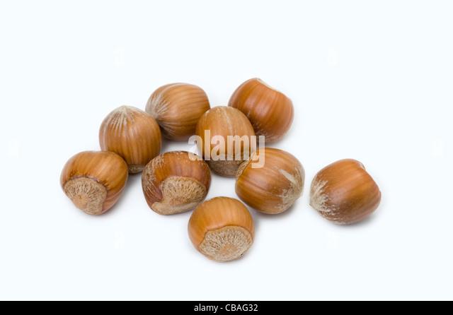 hazelnuts cutout - Stock Image