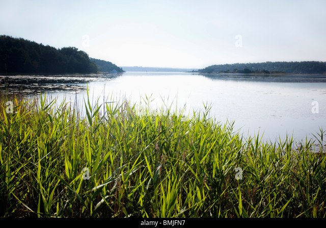 Lake under blue sky - Stock Image