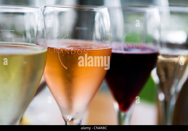 Australia, Victoria, wine-producing region of Yarra Valley at north east of Melbourne, Coldstream, wine tasting - Stock Image