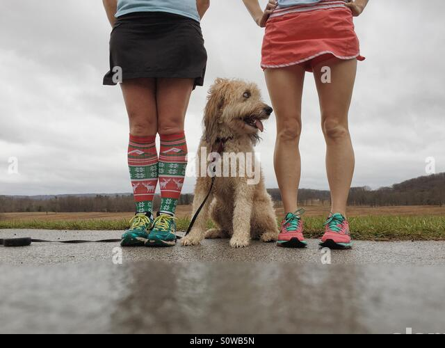 Two runner girls and a fluffy mutt - Stock Image