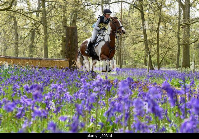 Henley on Thames, UK.  23 April 2017.  Participants take part in the Hambleden Horse Trials.  Celebrating its 20th - Stock-Bilder
