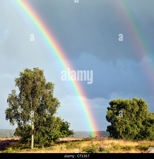 Rainbows across Grassland of Brocton Field on Cannock Chase Country Park AONB (area of outstanding natural beauty) - Stock-Bilder