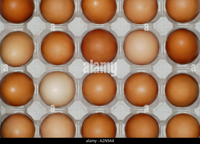 EGGS BACKGROUND IN AN EGG CARTON - Stock Image