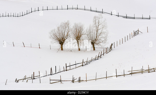 Natural Fences Stock Photos Amp Natural Fences Stock Images