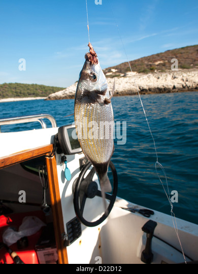 Spring hook stock photos spring hook stock images alamy for Fish n hook