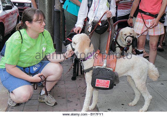 Philadelphia Pennsylvania Reading Terminal Market exterior sidewalk woman working service dog therapy animal ADA - Stock Image