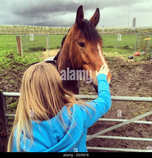 Young girl strokes a horse - Stock Image