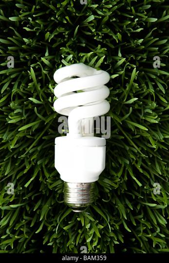 An energy saving lightbulb - Stock Image