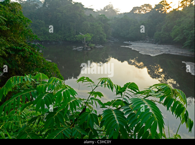 Democratic Republic of Congo in January 2011. Epulu river in Okapi Reserve in Congo Basin/Ituri Forest - Stock-Bilder