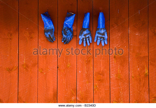 Blue gloves hanging on the wall - Stock Image