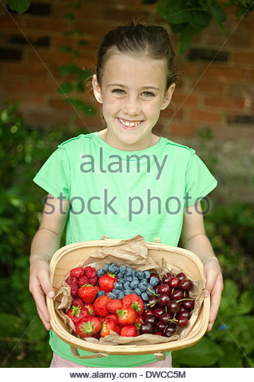 Garden trug of assorted berries - Stock Image