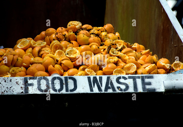 Food waste skip next to a juice bar, Glastonbury festival 2008 - Stock Image
