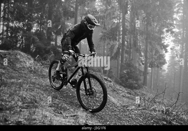 MTB Downhill Trail, Thuringian Forest, Germany - Stock-Bilder