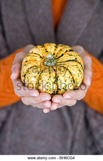 A woman holding a small pumpkin, close-up - Stock Image